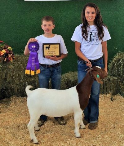 Reserve Grand Champion Breeding Doe: Andrew with JBI Flatout Flirty
